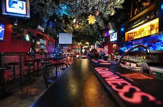 Forest Darts Café