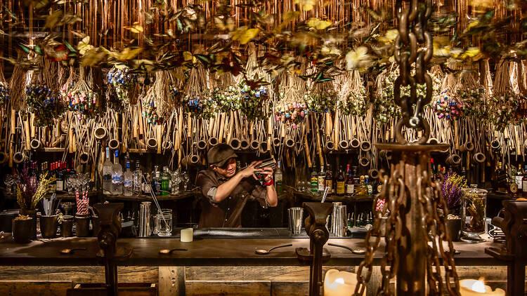 Iron Fairies interior