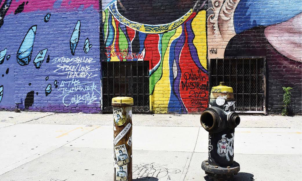 Secret Urban Suppers: Brooklyn, New York