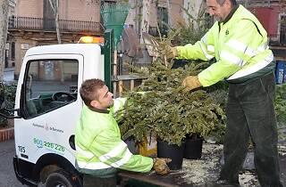 Dona una nova vida al teu arbre de Nadal