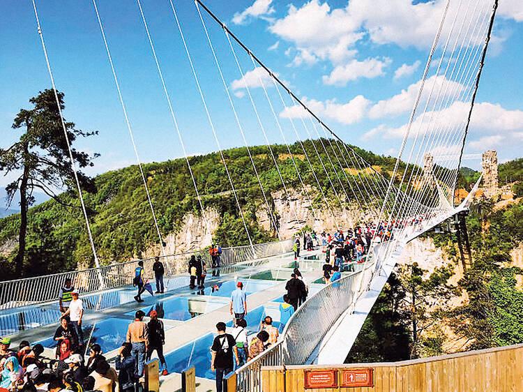 Dê um salto da ponte de vidro de Zhangjiajie