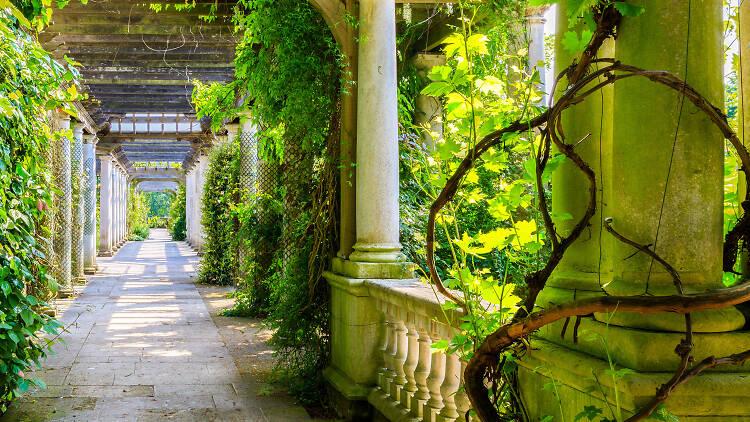 Hampstead Hill Pergola