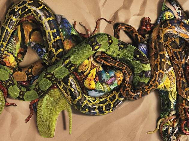 Snakes for Alexander McQueen by Nick Knight