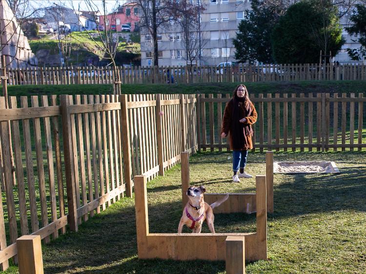 Exercite o seu melhor amigo no Parque Canino do Porto
