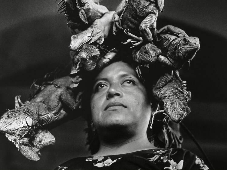 5 fotografías esenciales de la exposición Graciela Iturbide: Cuando habla la luz
