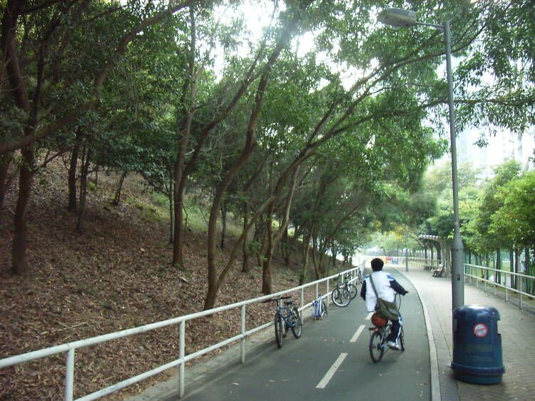Leisurely cycle along historical monuments