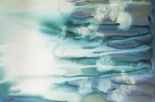 Katie Graham, Wild Series #8, Watercolour on Clay Aquaboard