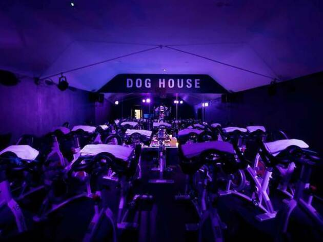 Dog House Fitness