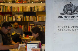 Rinoceronte (Foto: Alejandra Carbajal)