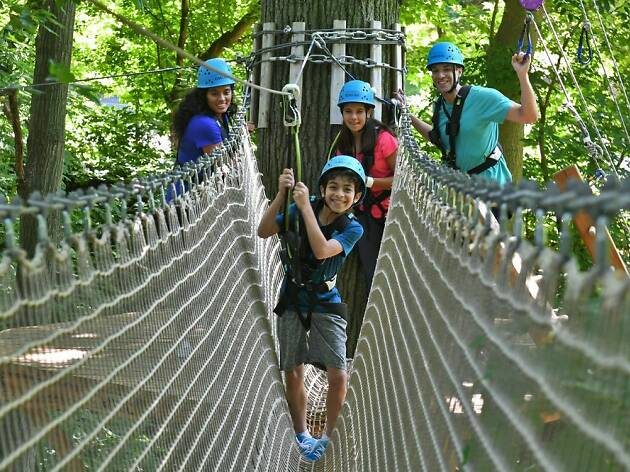 Bronx Zoo Treetop Adventure Birthday Parties