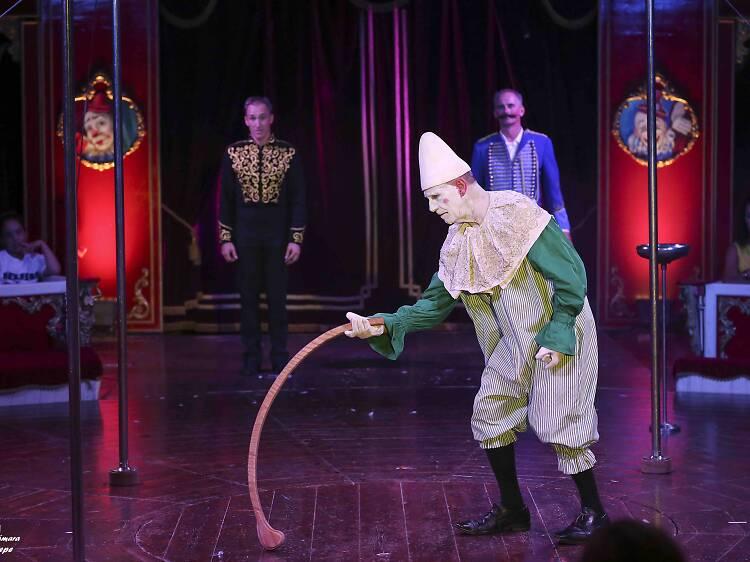 L'ànima del circ