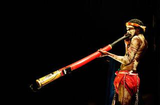 Didgeridoo