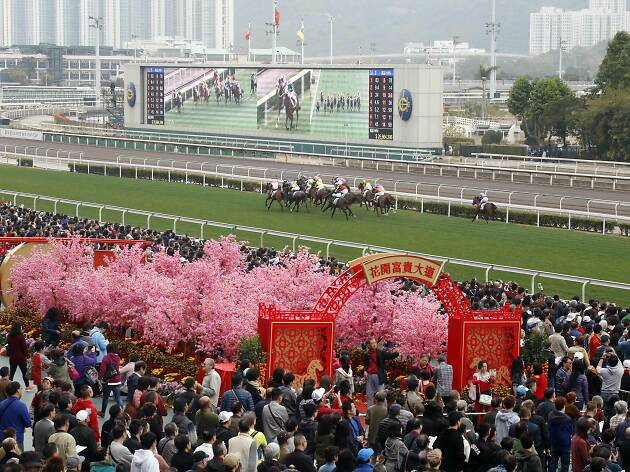 Chinese New Year Raceday