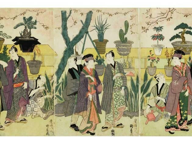 江戸の園芸熱