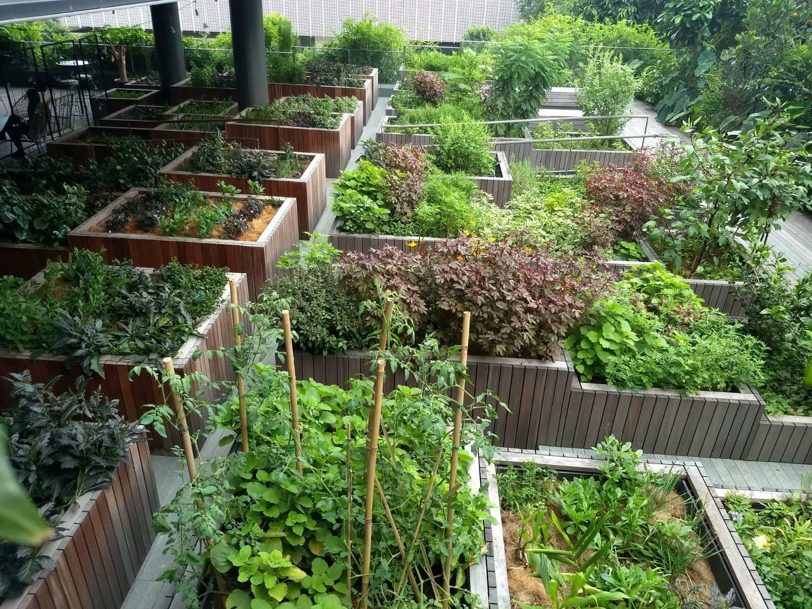 Edible Garden City