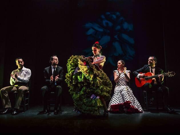 Flamenco Madrid