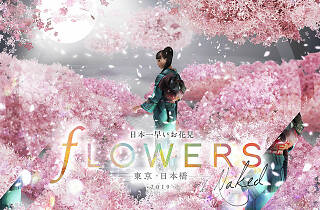 FLOWERS BY NAKED