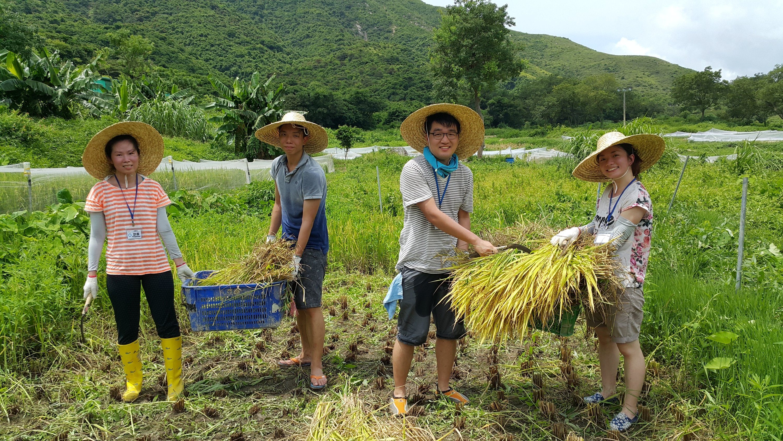 Yi O Farm