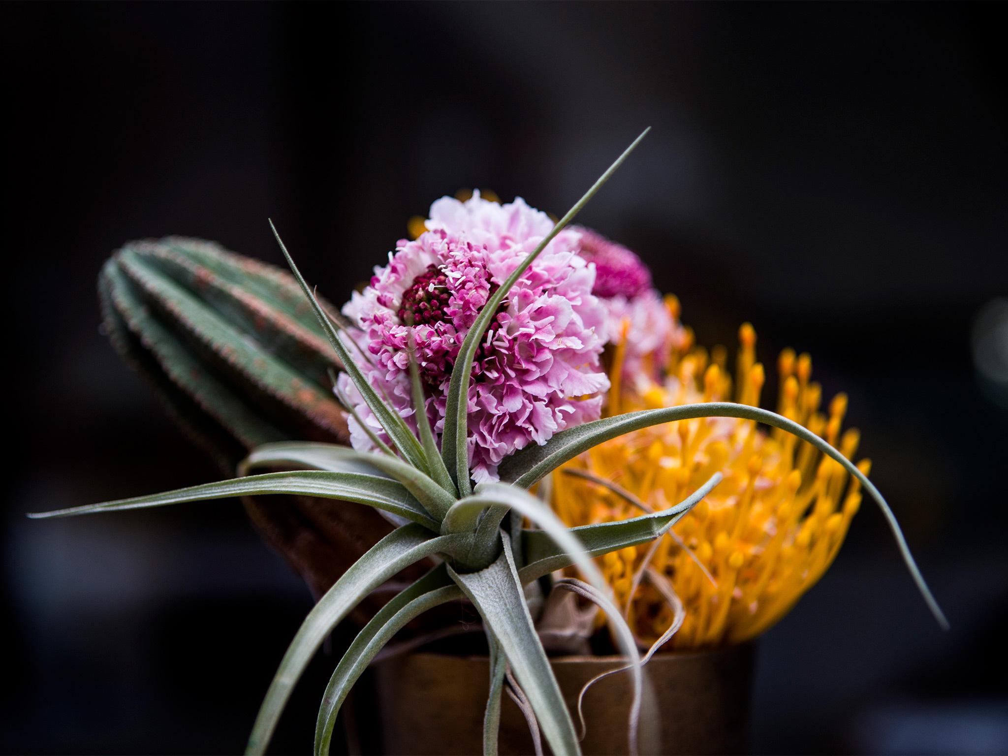 Best flower shops in Barcelona