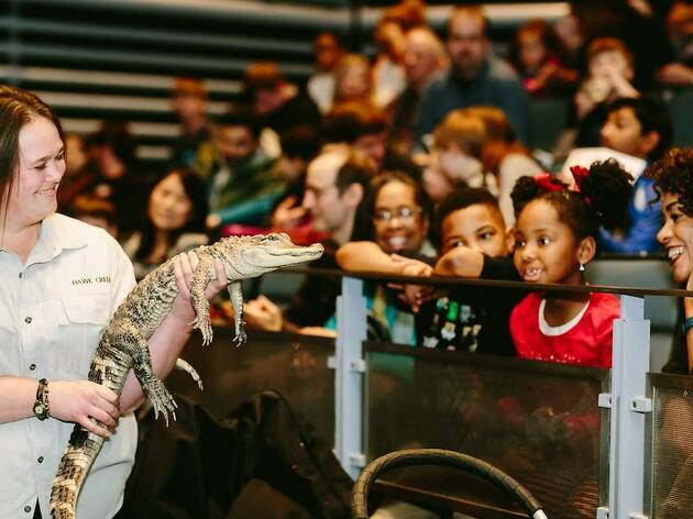 Things to do with kids in NYC this Sunday