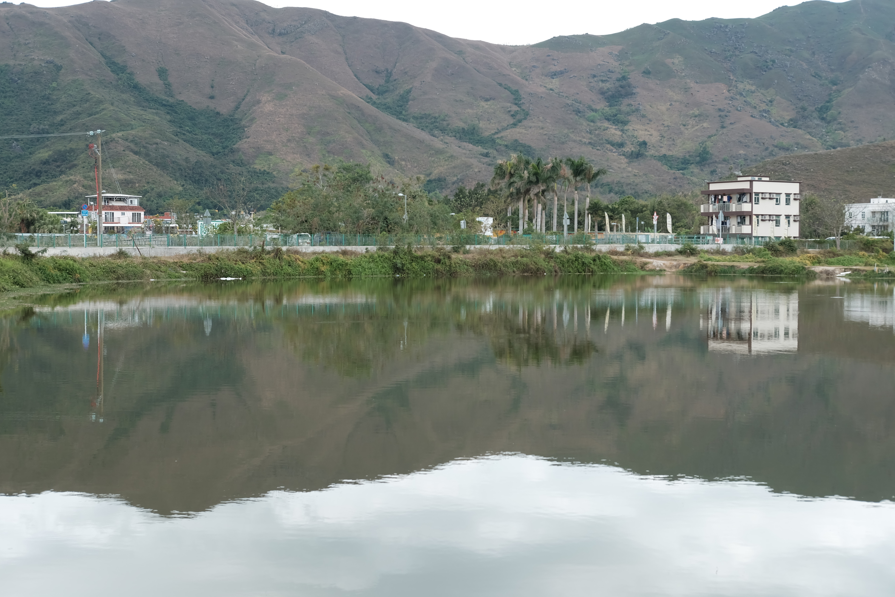 Shu Mei Village Pond
