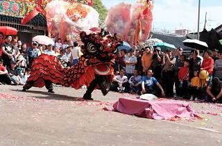 Kam Tin Lion Dance