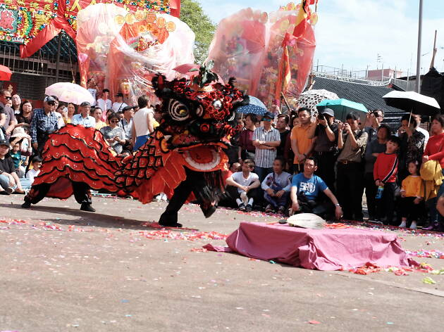 Kam Tin Lion Dance