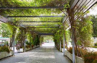 Jardines de Cristina
