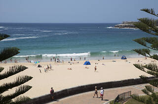 People on the sand at Coogee Beach.