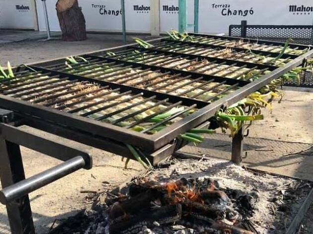 Calçots Changó