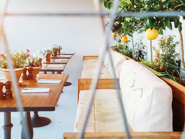 Bourne & Hollingsworth Garden Room
