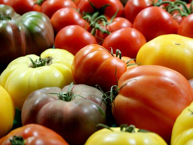 colorful produce, farmer's market