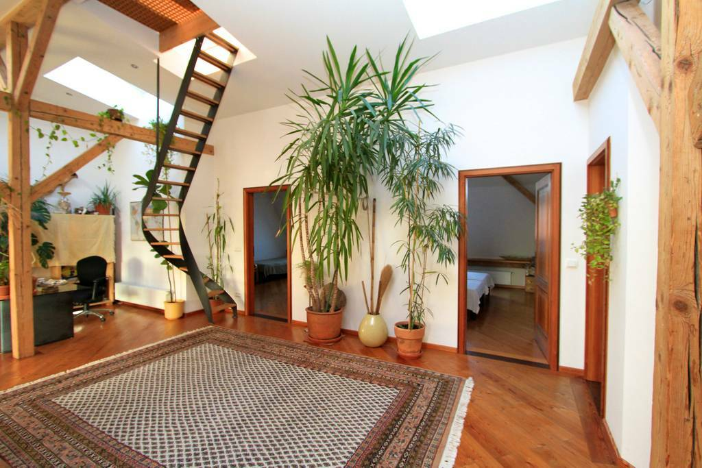 wooden interior with winding staircase and many plants
