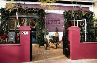 El Taller de Lucia flores