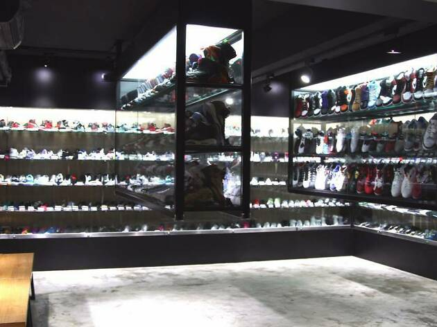 Search Sneaker Store
