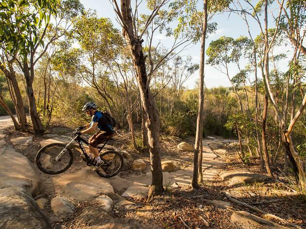 Person riding a bike in the bush.