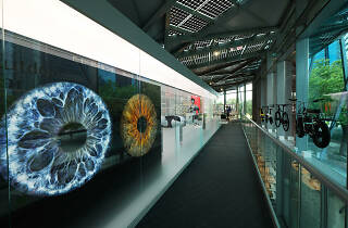 Red Dot Museum - Human-Nature Exhibition