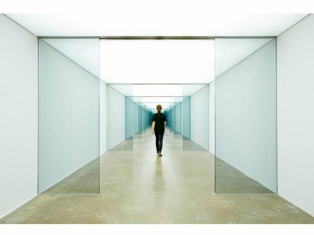 Carsten Höller (Foto: Cortesía Museo Tamayo Arte Contemporáneo)
