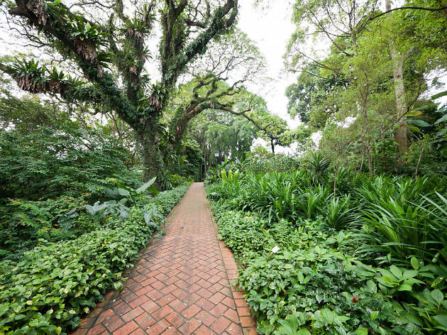 The best hiking trails for kids in Singapore
