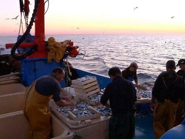 Cinema Lliure a la Biblioteca: Paysans de la mer. paraules de pescadors