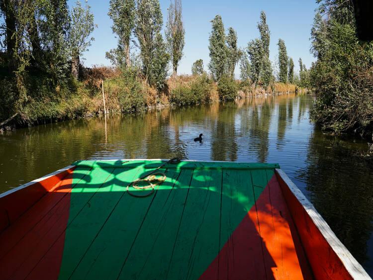 Lago de los Reyes Aztecas