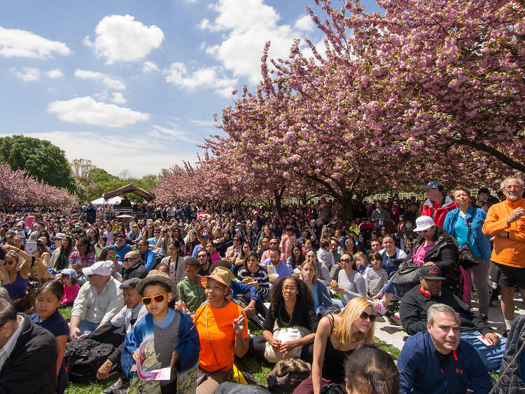 Here are the best things to do in spring in NYC