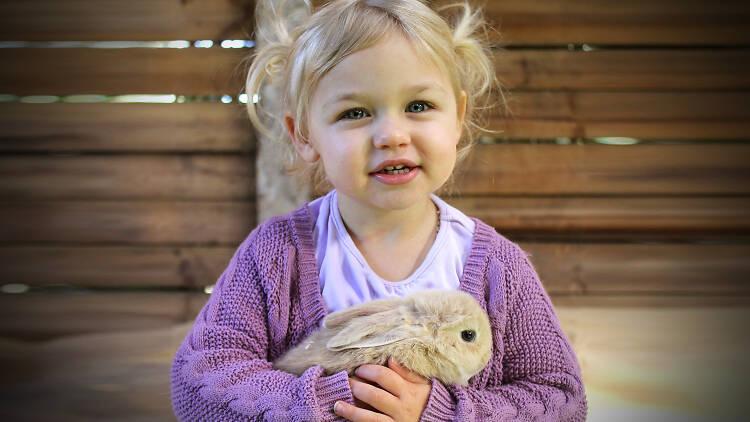 Girl holiday a bunny at Golden Ridge Animal Farm.