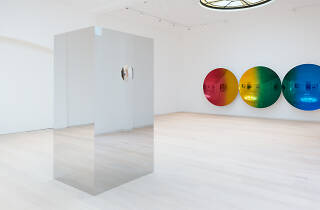 Anish Kapoor review