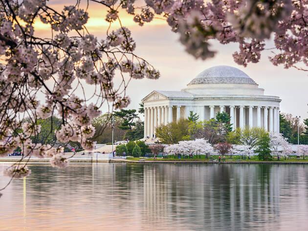 Washington D.C., Estados Unidos