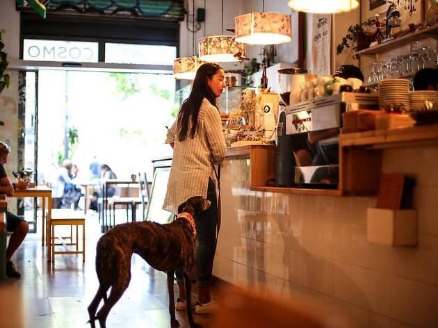 Cosmo Galeria Cafeteria