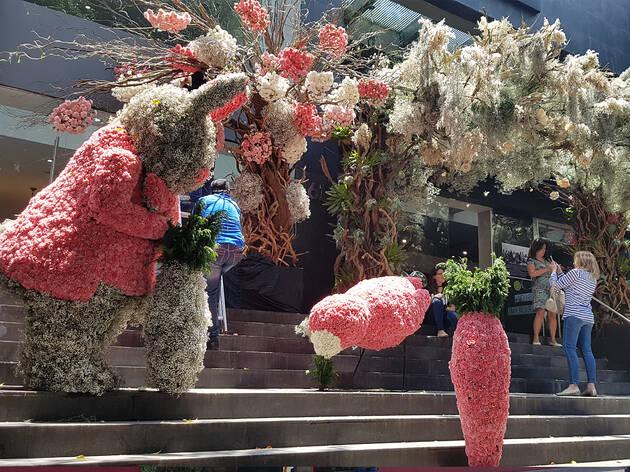 FYJA Polanco en flores 2019