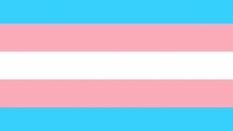 Bandera trans