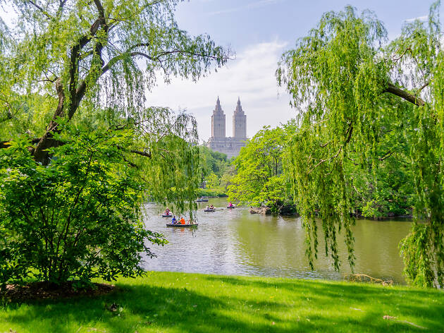 20 amazing things to do outside in New York