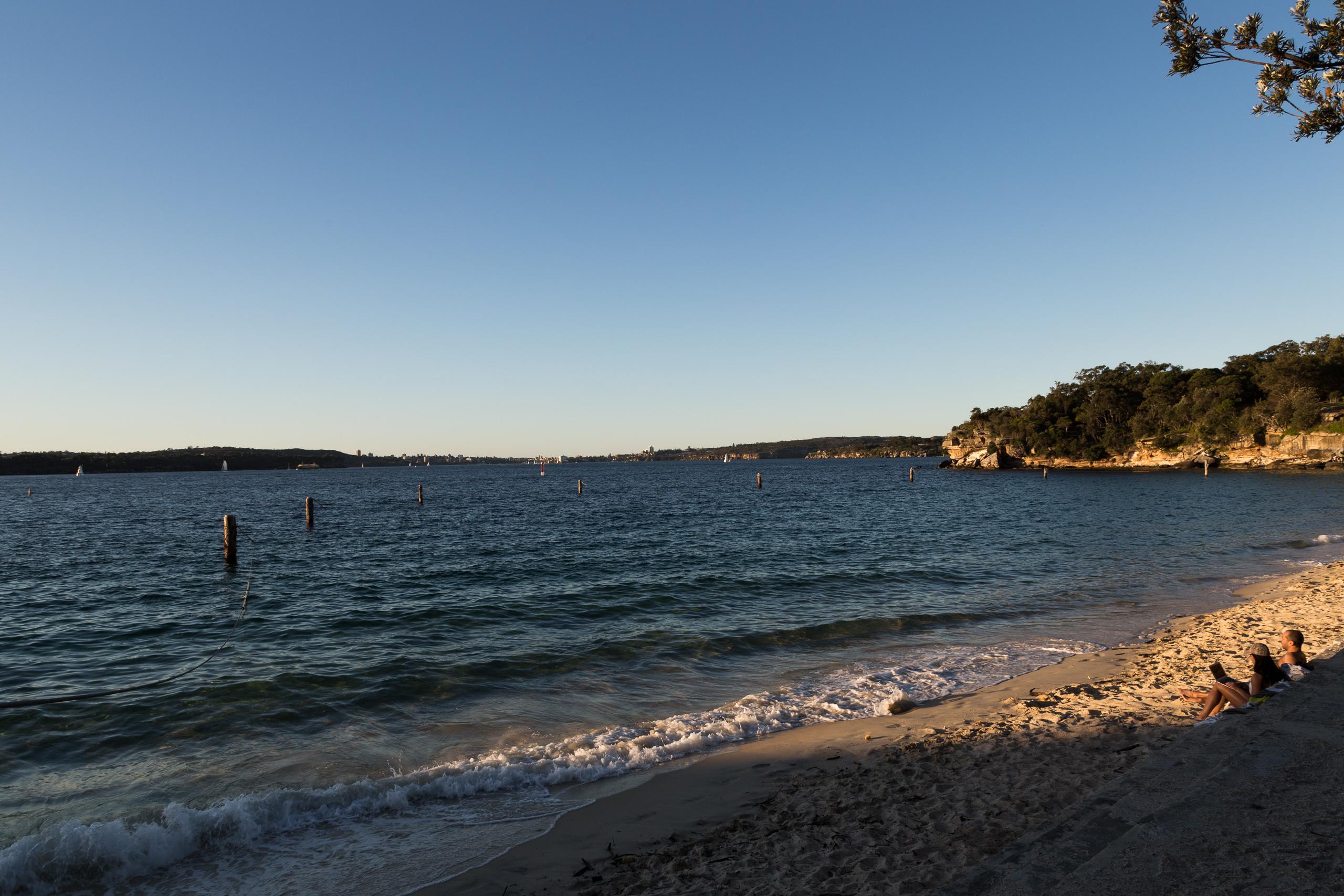 Ocean and sand beach at Shark Beach, Vaucluse